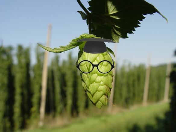 hop-hop cone-hop plant-hop nerd-hop head