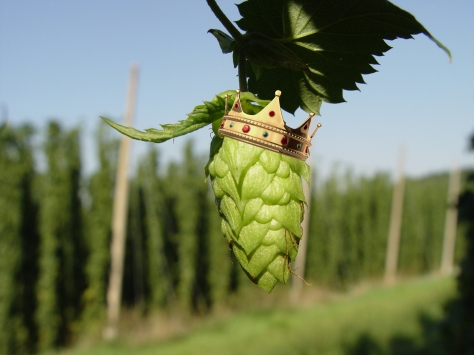hop cone with crown