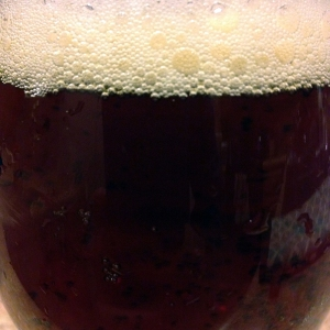 lazy magnolia-souther pecan-brown ale-beer-closeup_web