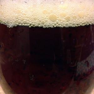 lazy magnolia-souther pecan-brown ale-beer-closeup_web
