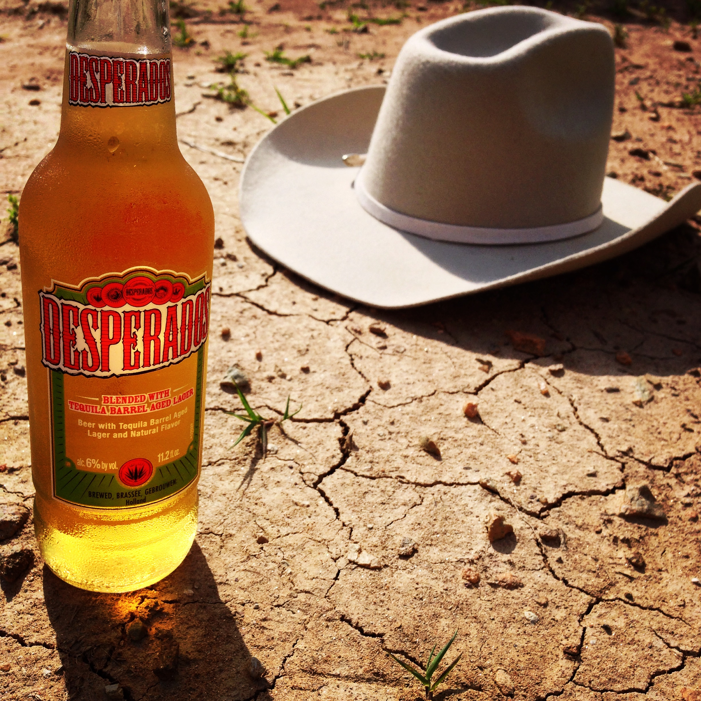 Heineken Desperados Tequila Beer Beertography Photo Picture This Is Why I M Drunk