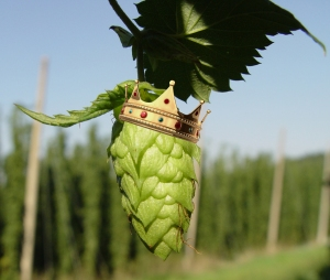 Who is king of the IPA?