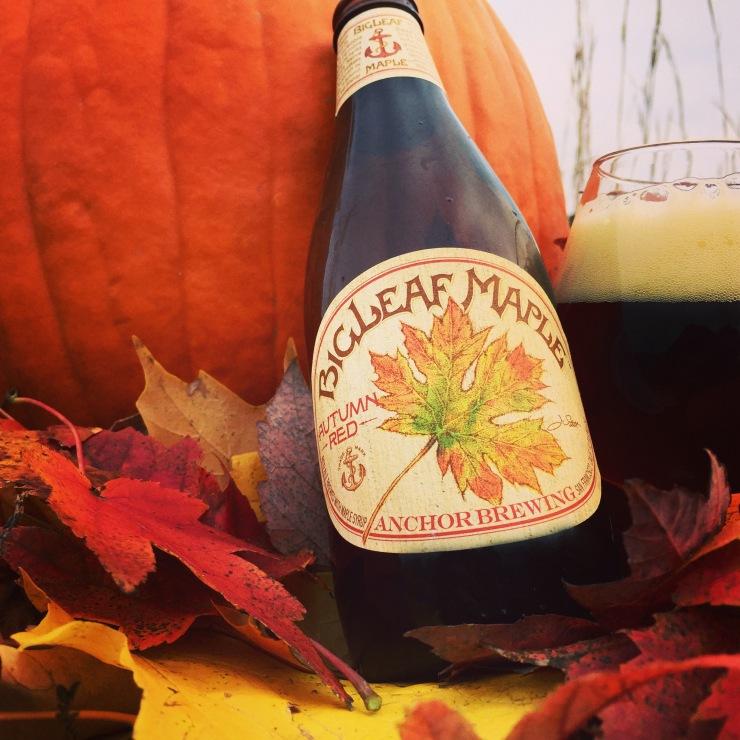 anchor-anchor brewing-big leaf maple-beer-craft beer-beertography-fall