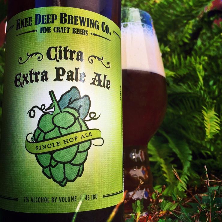knee deep brewing-citra extra pale ale-pale ale-beer-beertography-craft beer