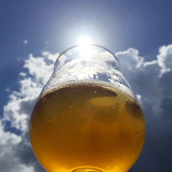 homebrew-summer-beer