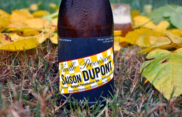 web-saison dupont-saison-beer-craft beer-beertography