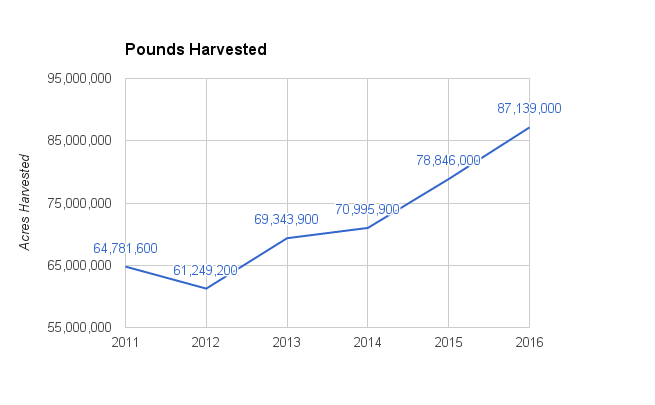 hop-pounds-harvested